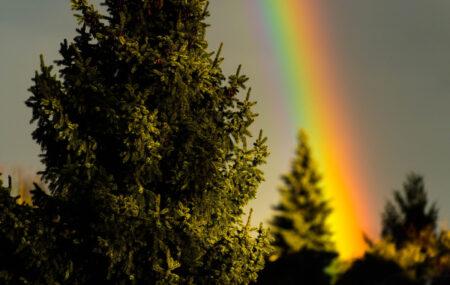 Regenbogen ©Tobias Marti